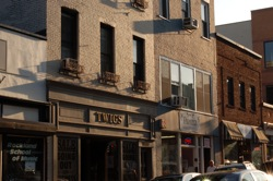 Twigs on Main Street in Nyack, June 2010. Photo Credit: Dave Zornow