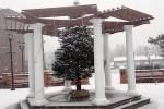 Veterans Park Snow Xmas Tree Photo Credit: ©2013 Dave Zornow