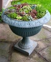 NSL143_Civic Garden_cedum garden