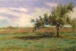 LAI_Byrnes_tree -Thumbnail