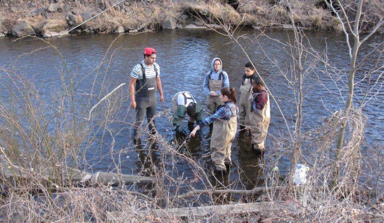 minisceongo creek